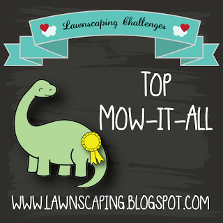 top-mow-it-all-2015-01
