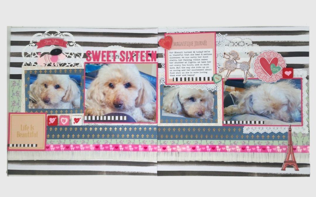Biscuit's Sweet Sixteen!