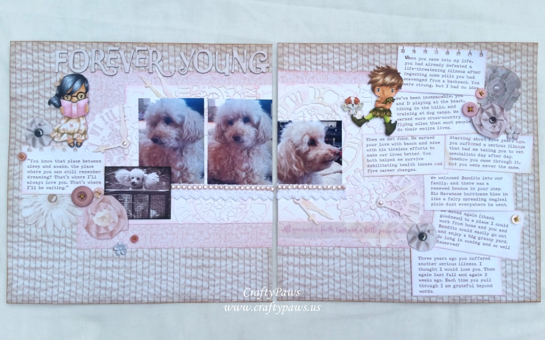 Forever Young: A Sentimental Layout of My Sweet Biscuit