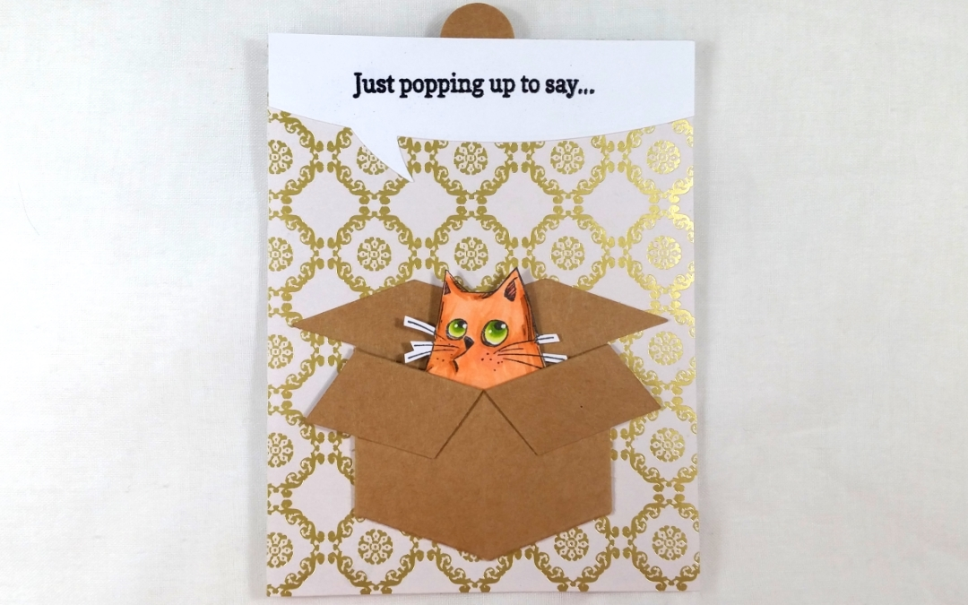 Cat in a Box Surprise Slider Card!