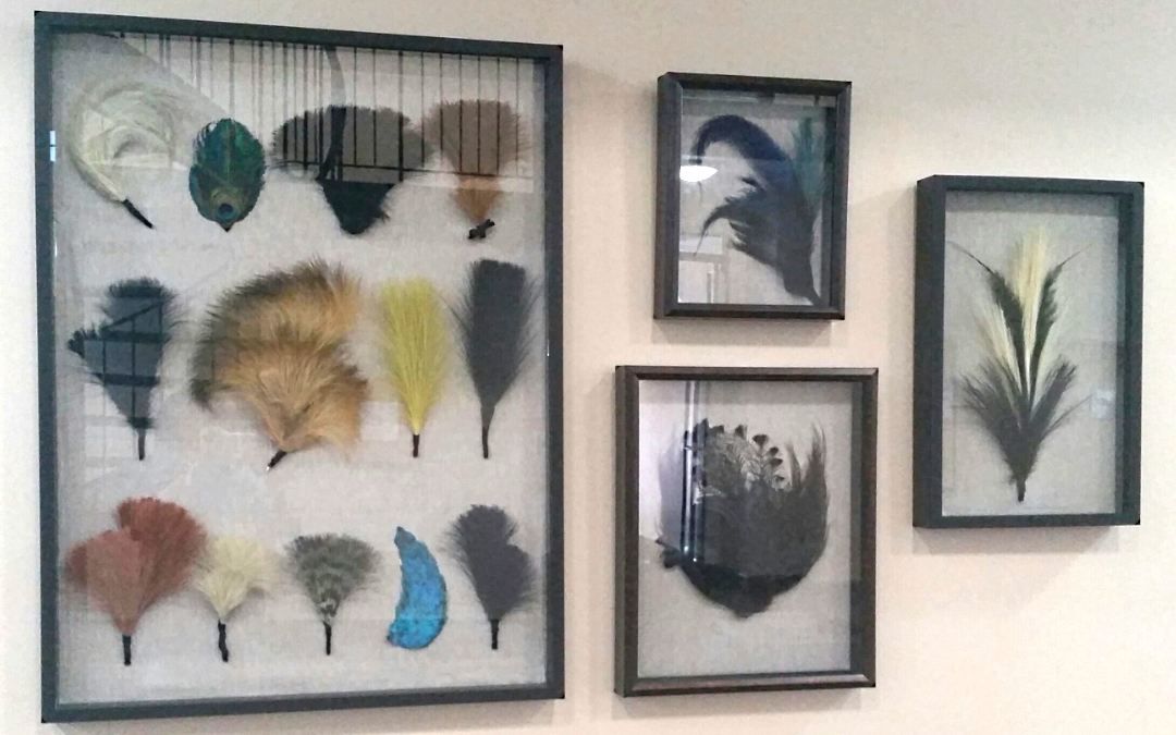 Vintage Feather Collection Art