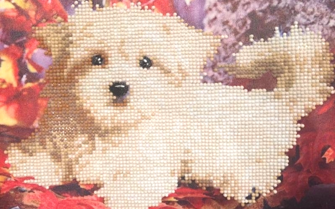 My First Diamond Painting – Cookie